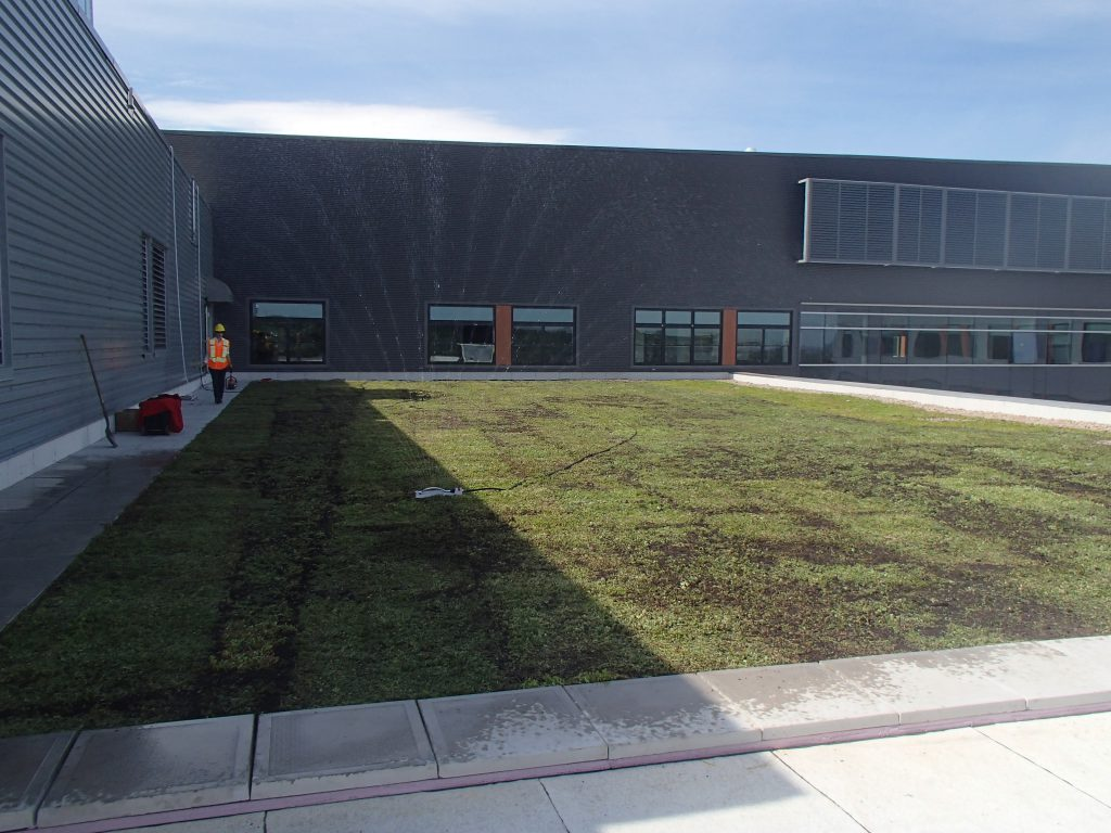 CPA High, Green Roof